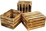 Kistenbaron Holzkiste im Vintage Look - Obstkiste Weinkiste Dekoration - Geflammt - 50 x 40 x 30 3er Set Ohne Ablage