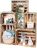 LAUBLUST Vintage Holzkisten 5er Set Geflammt - 50x40x30cm / 40x30x25cm | Weinkisten & Obstkisten | Deko- & Möbelkisten